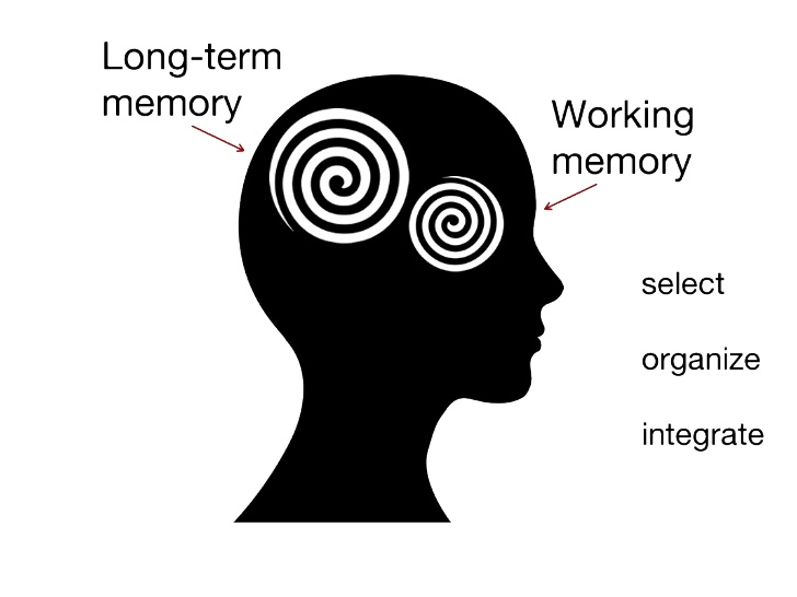 Free Working Memory Cliparts, Download Free Clip Art, Free