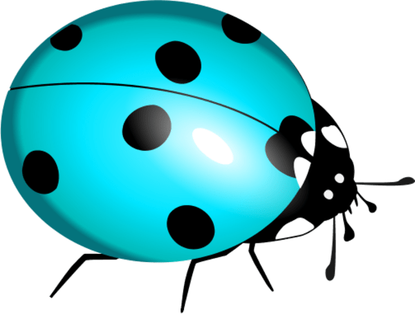 free blue bug cliparts