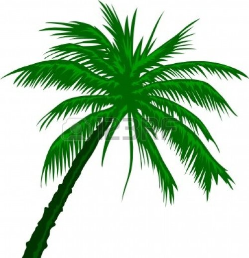 small resolution of free palm tree clip art image