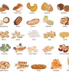 grains food group clipart meats [ 1516 x 1452 Pixel ]