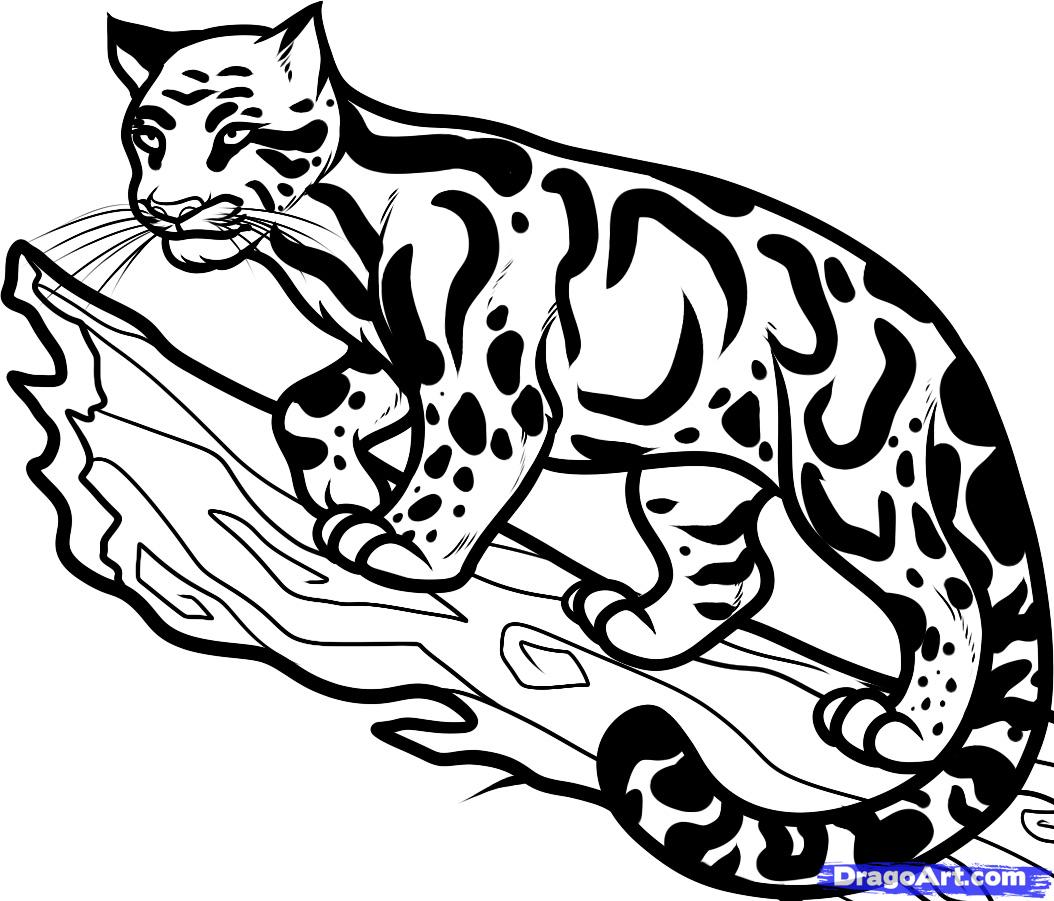 Free Simple Leopard Cliparts Download Free Clip Art Free