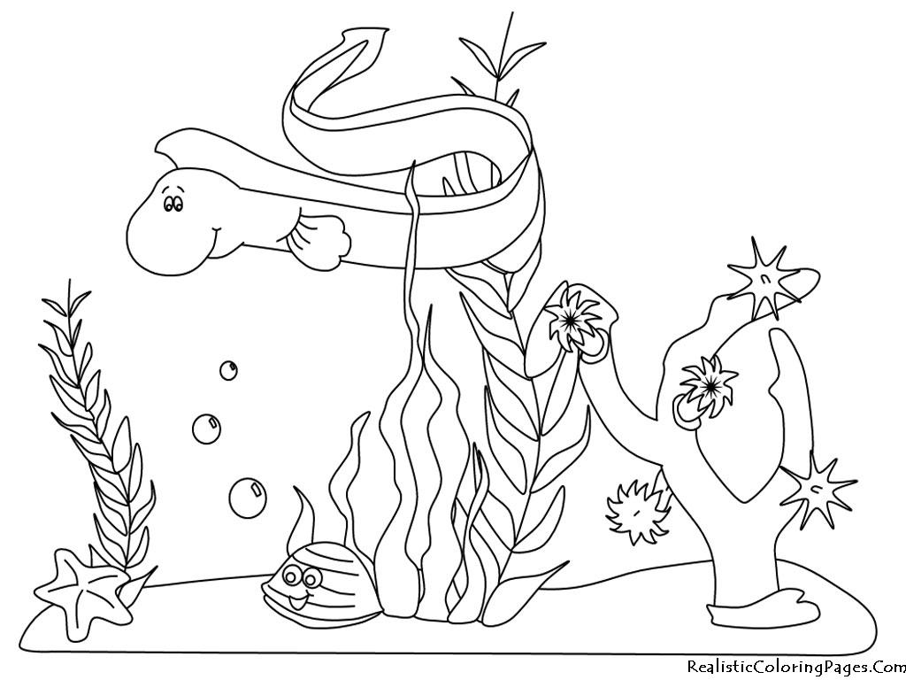 Free Ocean Plankton Cliparts Download Free Clip Art Free