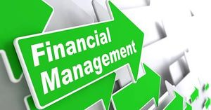 Free Finance Management Cliparts Download Free Clip Art