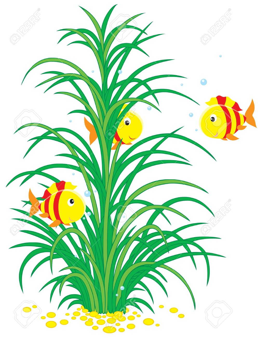 hight resolution of under water seaweed clipart