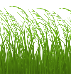 stake in grass clipart [ 3508 x 1757 Pixel ]