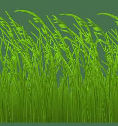 grass clip art free free clipart image stake [ 3508 x 1757 Pixel ]