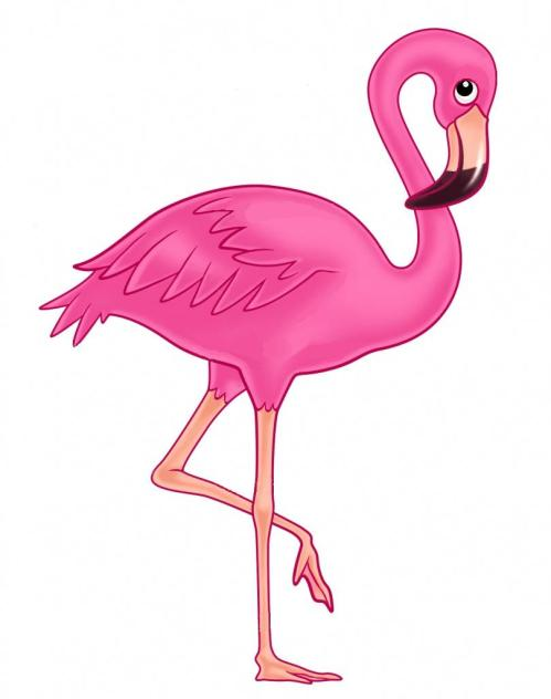 small resolution of flamingo outline clipart