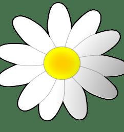 daisy [ 3166 x 3139 Pixel ]
