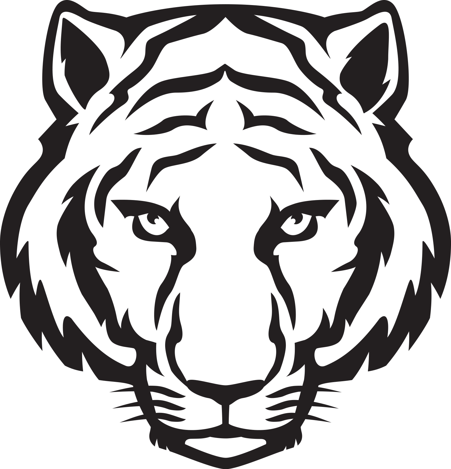 hight resolution of tiger