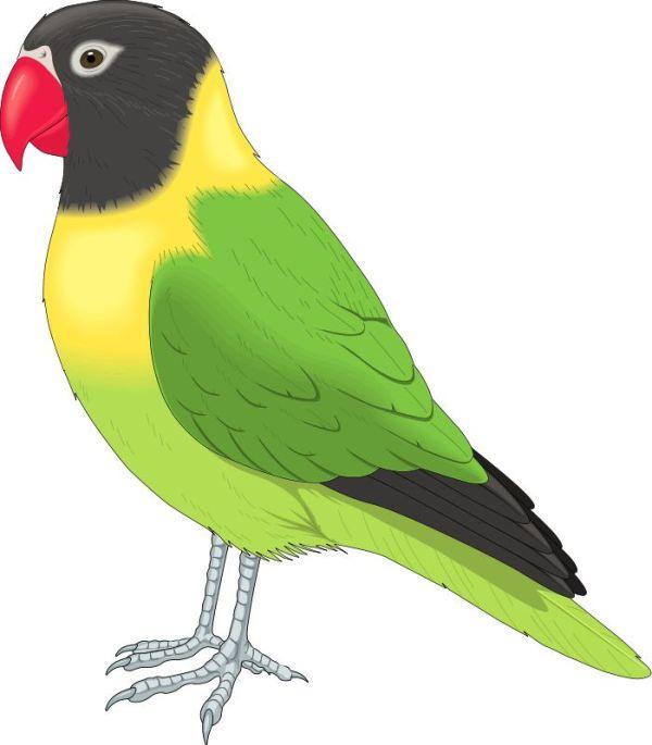 free bird print cliparts