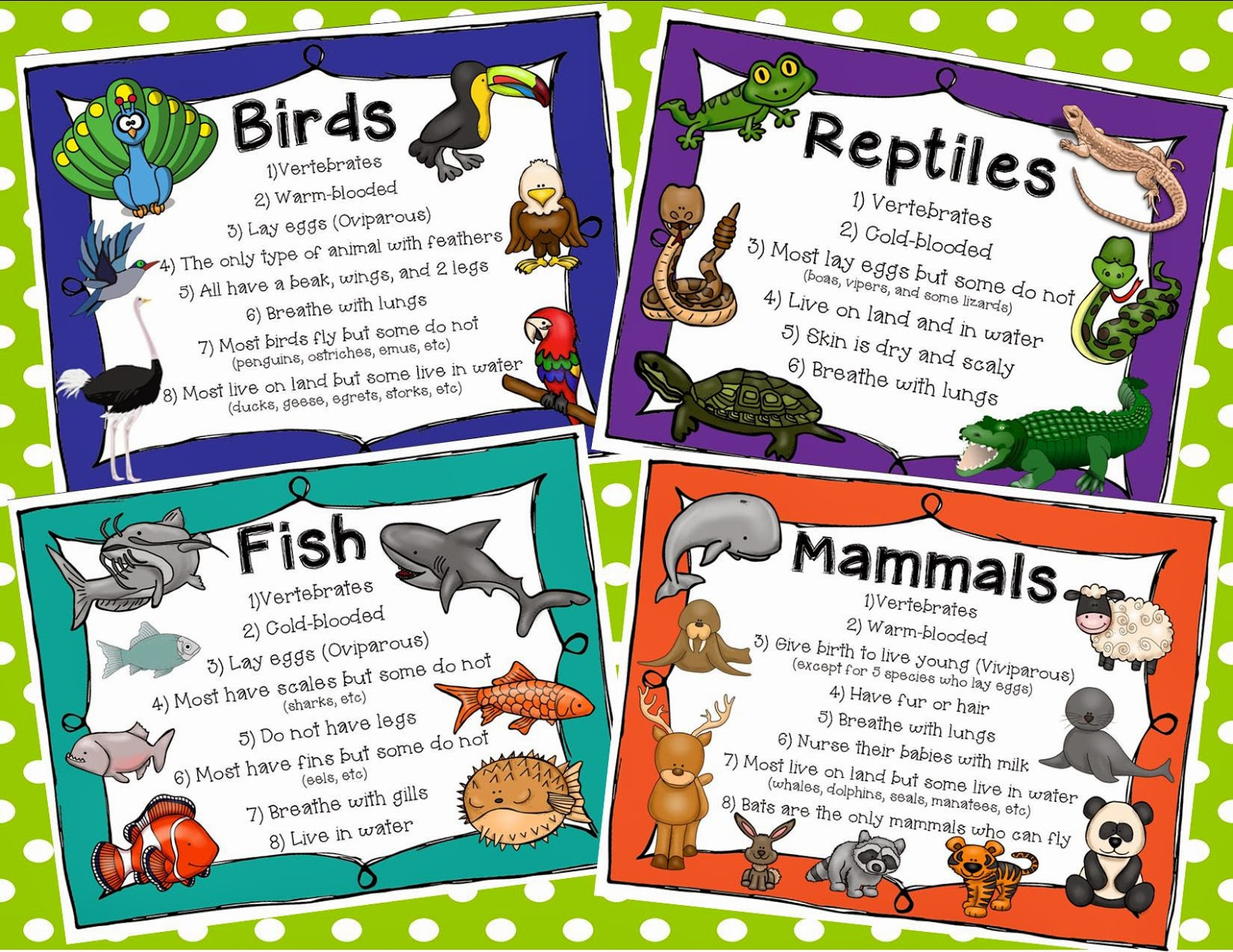 Animal Habitats Clipart