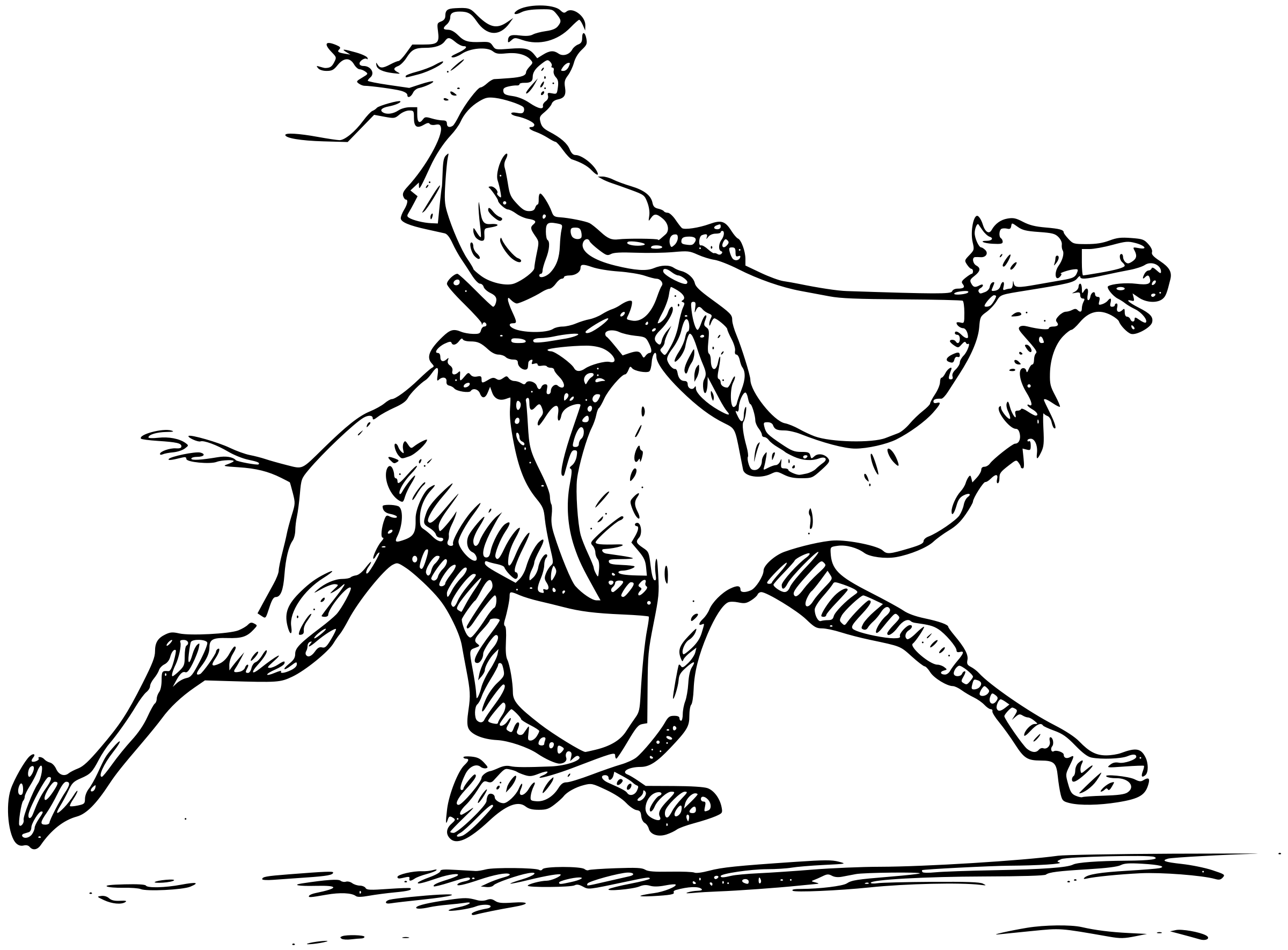 Free Camel Ride Cliparts Download Free Clip Art Free