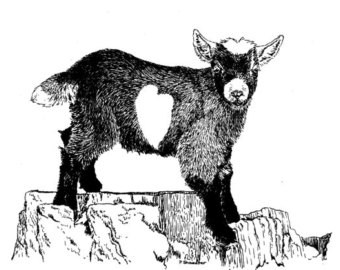 Original of the Pen and Ink Pygmy Goat by TheFruitofourLabors