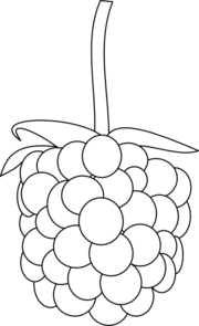 Free Berry Outline Cliparts, Download Free Clip Art, Free