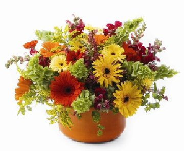 free autumn flowers cliparts