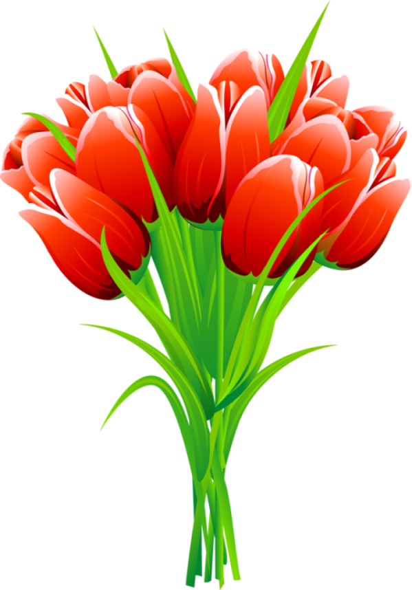 red pink and yellow tulips clipart
