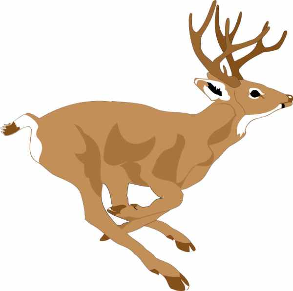 Free Fall Hunting Cliparts Clip Art Clipart Library