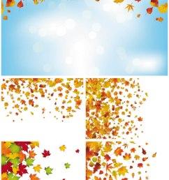 fall [ 800 x 1300 Pixel ]