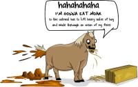 Free Dumb Horse Cliparts, Download Free Clip Art, Free ...