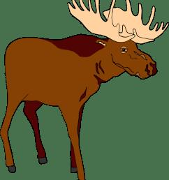 moose [ 958 x 1089 Pixel ]