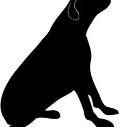 dog [ 1000 x 1260 Pixel ]