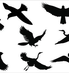 clipart flying [ 2084 x 1459 Pixel ]