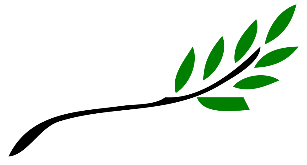 medium resolution of branch