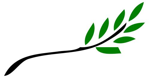 small resolution of branch