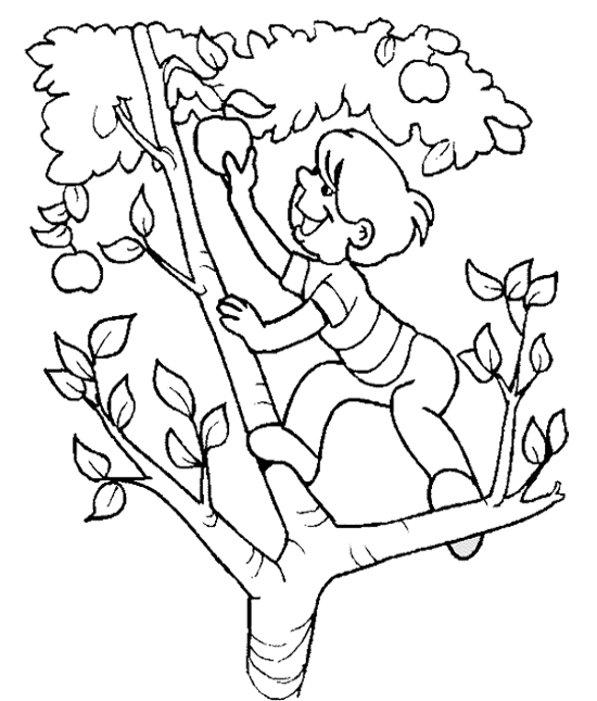Free Apple Picking Cliparts, Download Free Clip Art, Free