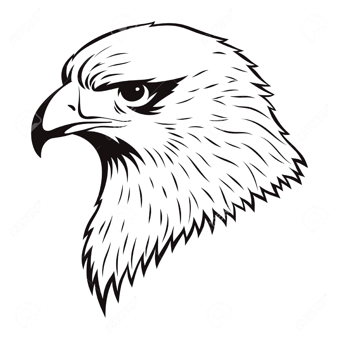 Electric Simple Eagle Drawings How To Draw An Eagle