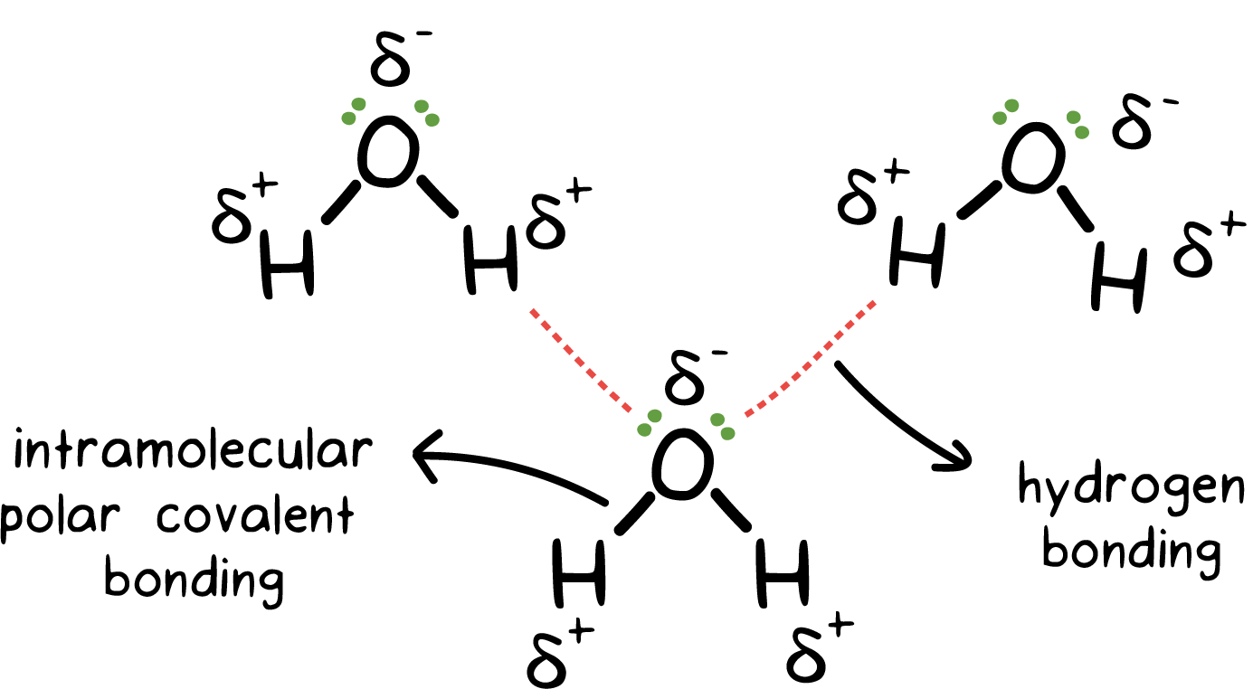 Free Intermolecular Forces Cliparts, Download Free Clip