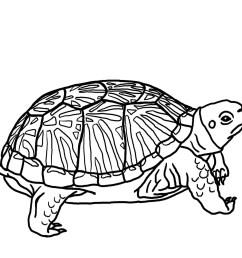 red ninja turtle standing clipart baby [ 1200 x 1200 Pixel ]