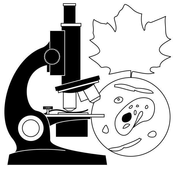 Free Science Cliparts Black Clip Art