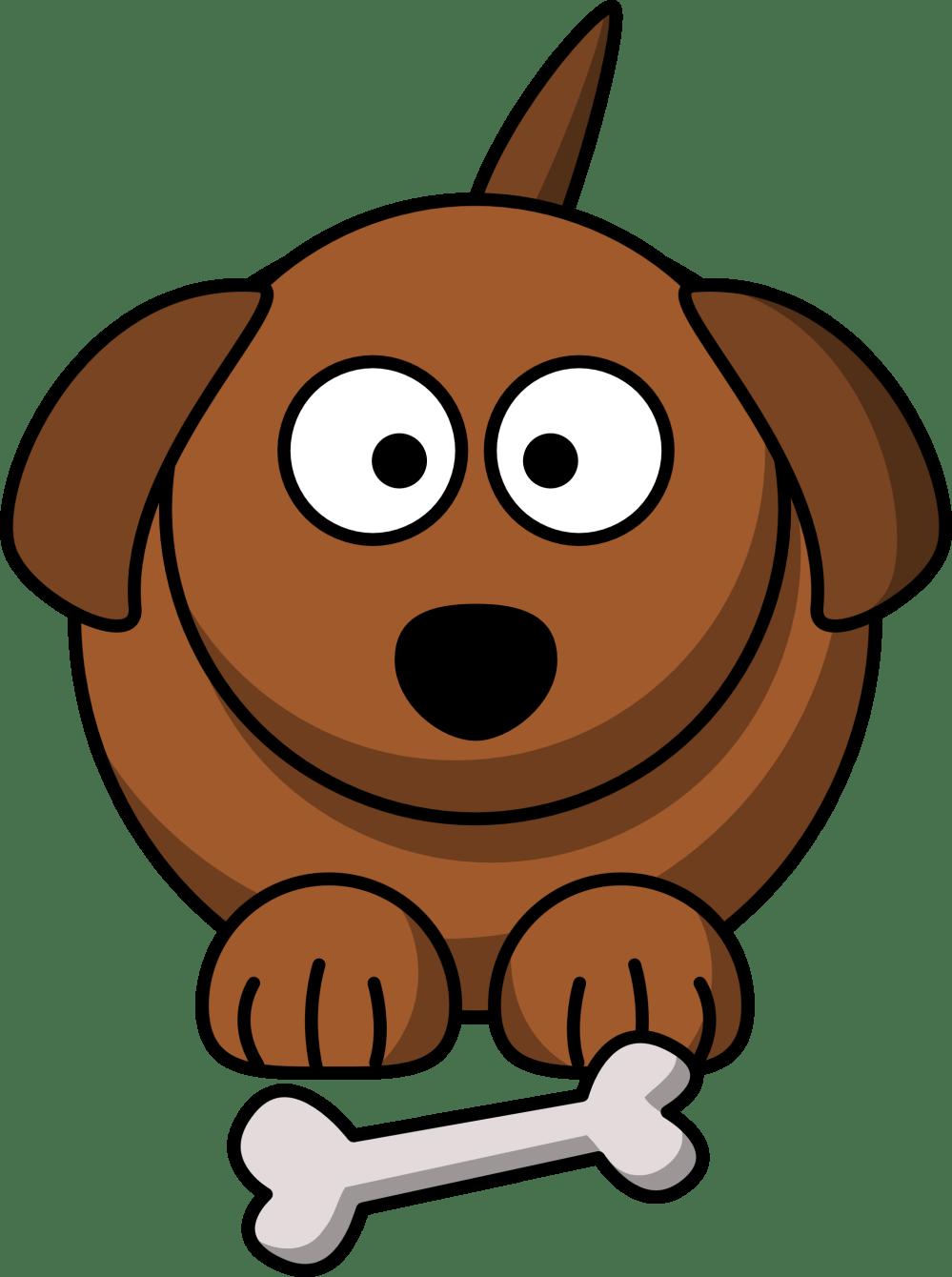 medium resolution of animal