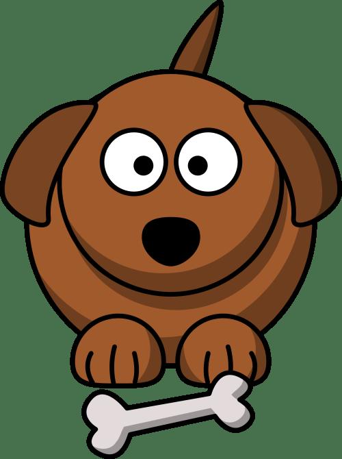 small resolution of animal