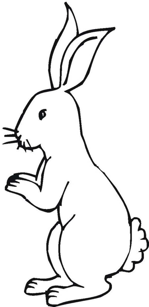 Free Rabbit Standing Cliparts, Download Free Clip Art