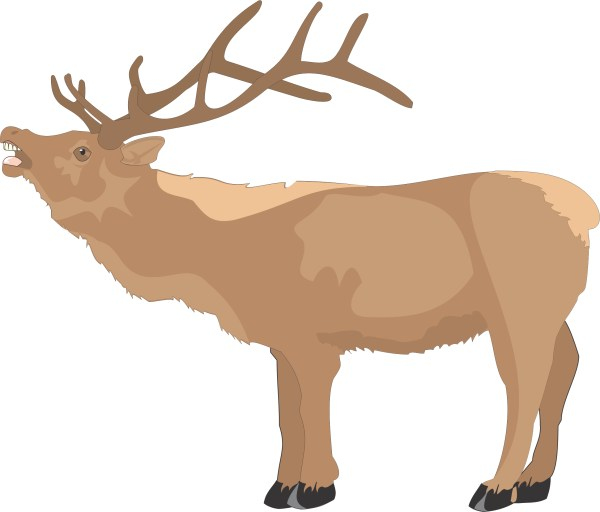 Free Reindeer Cliparts Side Clip Art Clipart Library