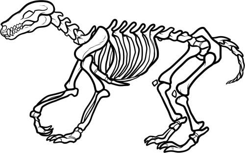 small resolution of dinosaur bones clipart dinosaur dinosaur skeleton clipart