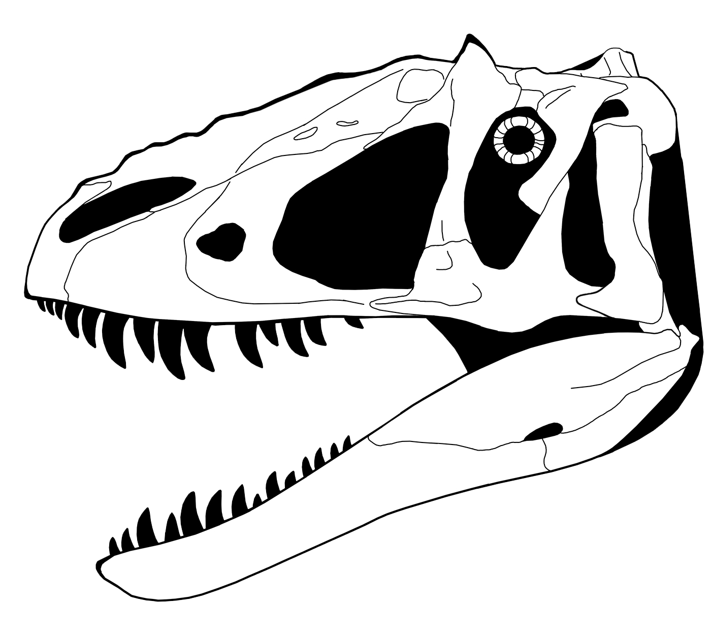 Free Dinosaur Skeleton Cliparts Download Free Clip Art