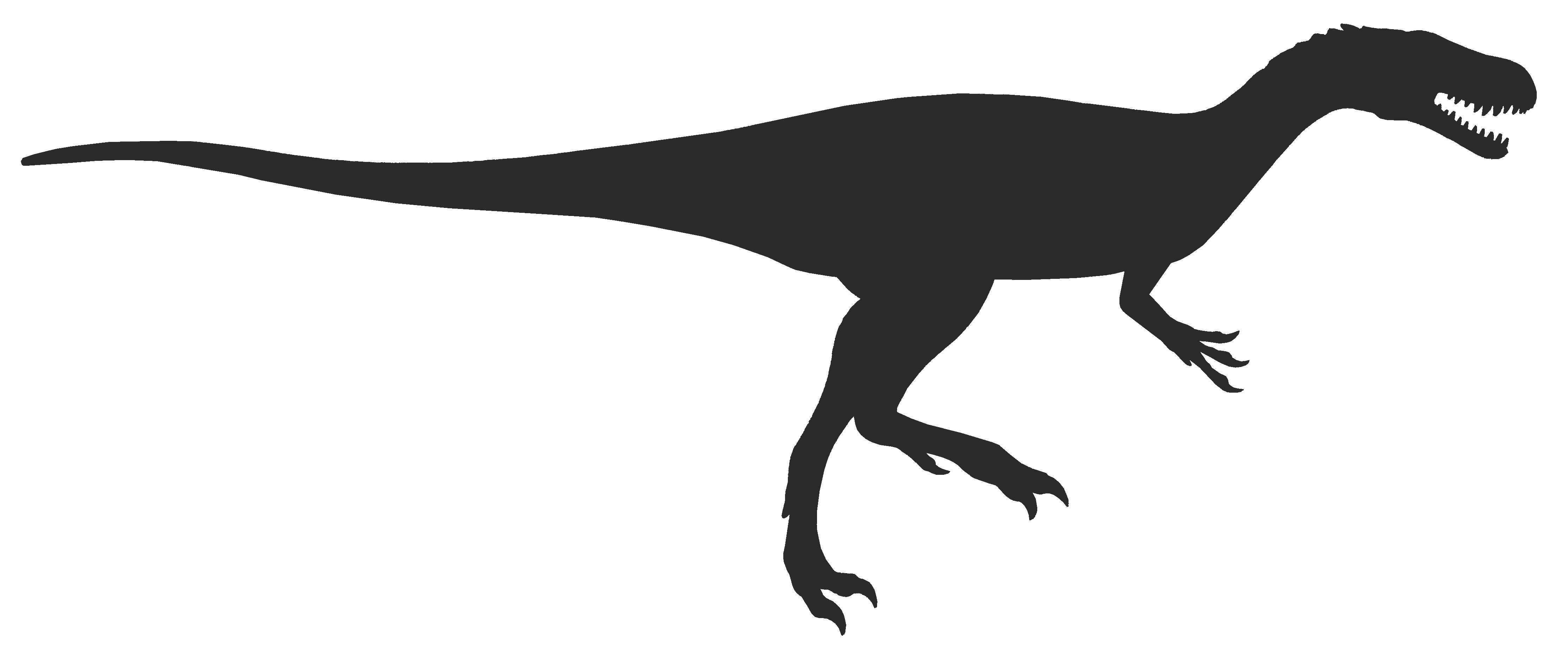Free Dinosaur Tail Cliparts, Download Free Clip Art, Free