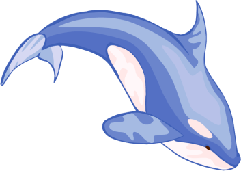 cartoon drawing blue whale Clip Art Library