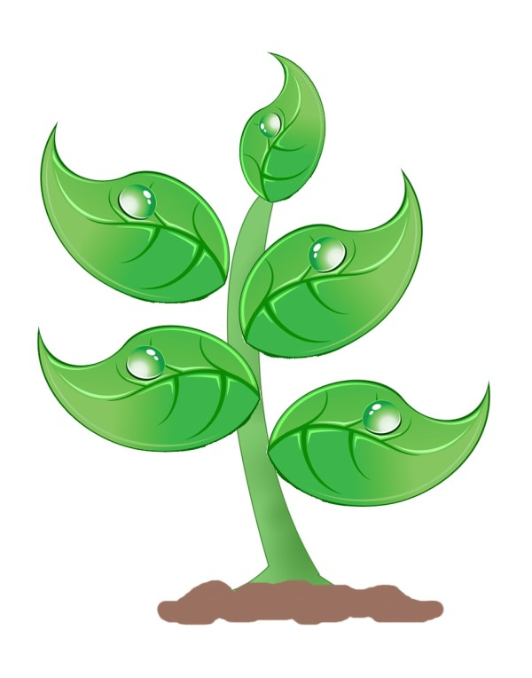 Plant Science Clipart