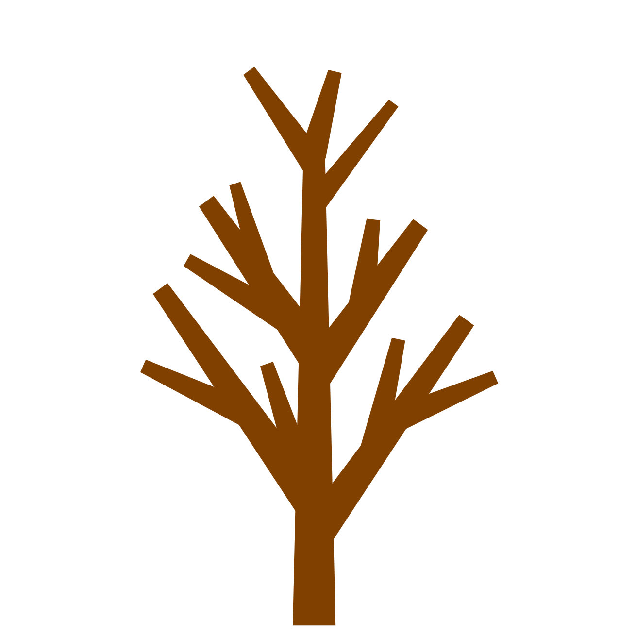 Tree With No Leaf
