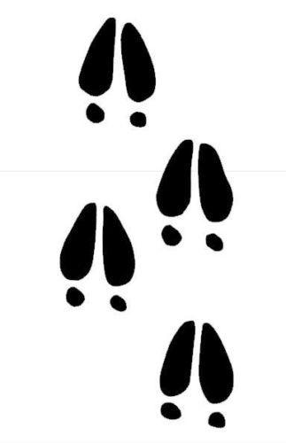 Free Deer Footprints Cliparts, Download Free Clip Art
