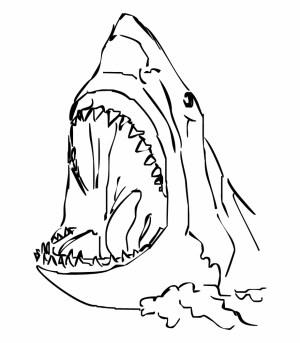 shark drawing easy sharks simple drawings head draw clipart freebie powerpoint huge personal use bite oni samurai lemon transparent dva