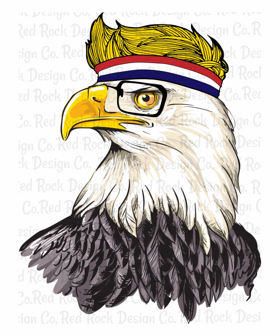 Bald Eagle Head Png : eagle, Eagle, Download, Clipart, Library
