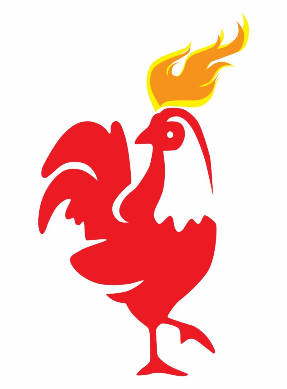 Gambar Ayam Jantan Logo Vektor Template Bentuk Ilustrasi