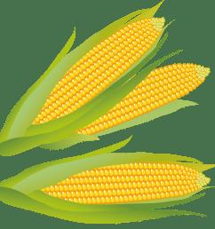 corn clip art free free clipart images 4 [ 4172 x 4125 Pixel ]
