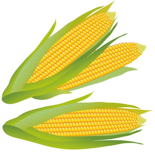 small resolution of corn clip art free free clipart images 4