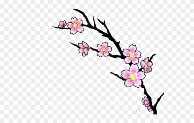 tattoo flower cherry blossom designs clipart transparent cliparts library 123clipartpng drawing